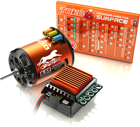 SkyRC Cheetah 1/10th 60A ESC with 21.5T Motor - Sensored Combo and Programming Card